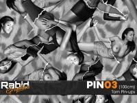 Torn Pin-ups (100cm)